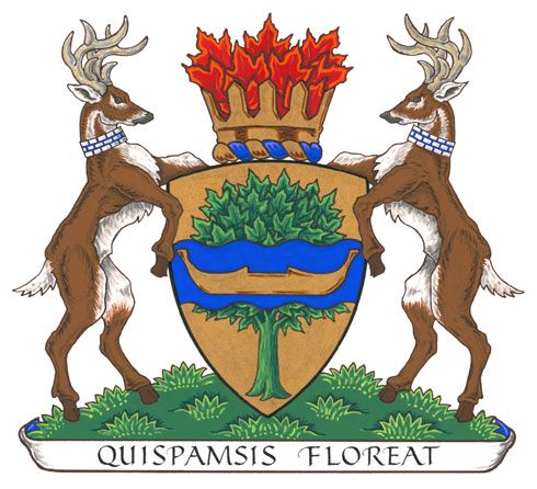Arms (crest) of Quispamsis