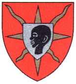 Arms of Mbigou