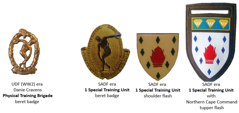 File:1 Special Training Unit, South African Army.png