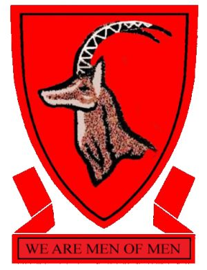 Arms (crest) of Allan Wilson High School
