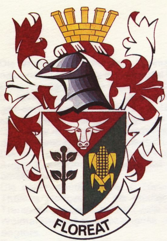 Arms of Wolmaransstad