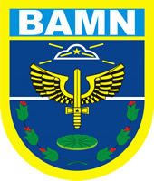 Coat of arms (crest) of the Manaus Air Force Base, Brazilian Air Force