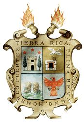 Arms of Saltillo