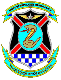 Coat of arms (crest) of the Special Operations Air Group No 10, Air Force of Venezuela