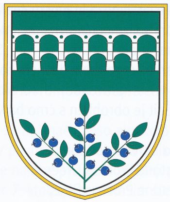 Arms of Borovnica
