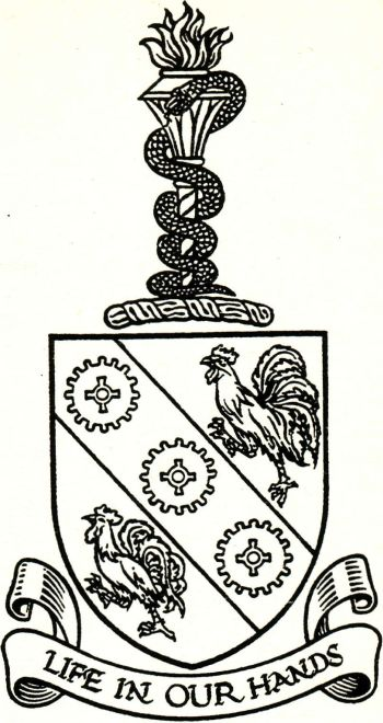 Arms of Institute of Hospital Engineering
