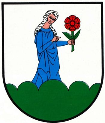 Arms of Susz
