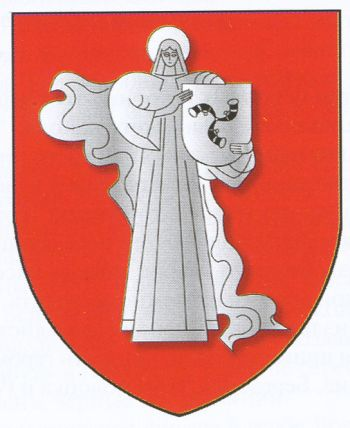 Arms of Zhodzina