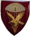 1st Parachute Battalion, South African Army.jpg