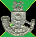 Durban Light Infantry, South African Army.jpg