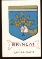 arms of the Brincat family