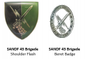 43 Brigade, South African Army.png