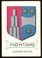 arms of the Montano family