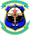 Instrument Air Training Group No 7, Air Force of Venezuela.png