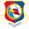 184th Intelligence Wing, Kansas Air National Guard.png