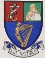 Royal College of Physicians of Ireland - Institute of Obstetricians and Gynaecologists.jpg