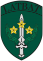 1st Mechanized Infantry Battalion, Latvian Army.png