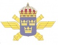 Air Defence Regiment, Swedish Army.jpg