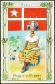 Arms, Flags and Folk Costume trade card Natrogat Samoa