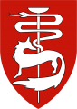 Southern Command Medical, Israel Defence Forces.png