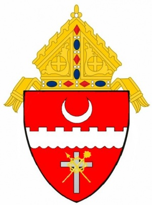 Arms (crest) of Diocese of Brownsville