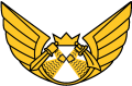 Carelian Air Force Wing, Finnish Air Force.png
