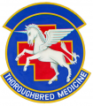 123rd Tactical Hospital, US Air Force.png